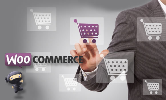 WooCommerce: The next e-commerce milestone
