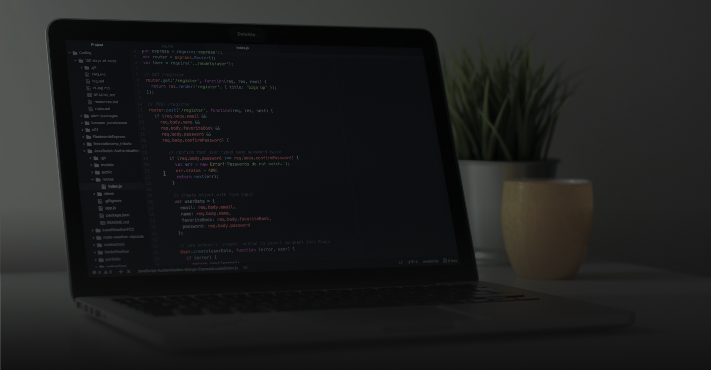 Codeigniter Web Framework Development Company Banner